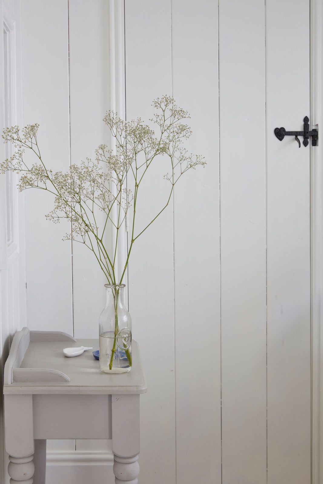 plant at luxury cottage in cornwall to rent